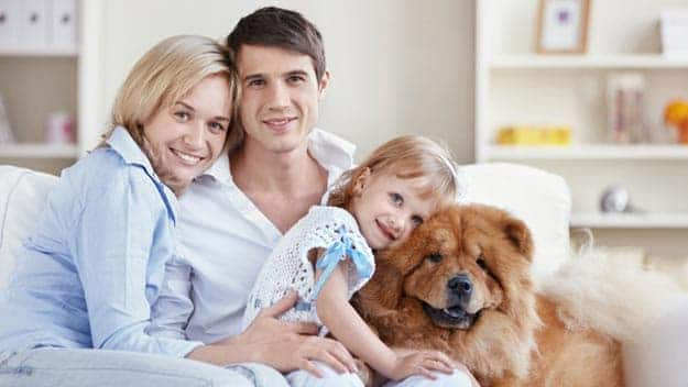 Wills & Trusts dog-young-family Direct Wills Uppingham